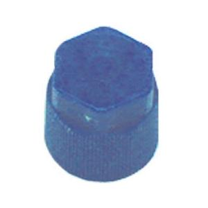 AC135 TMR R134A BLUE LOW SIDE M8 X 1 CAP ROUND WITH HOLE