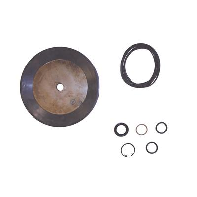 TI182079 TMR BEAD BREAKING CYLINDER SEAL KIT FOR COATS TIRE CHAN