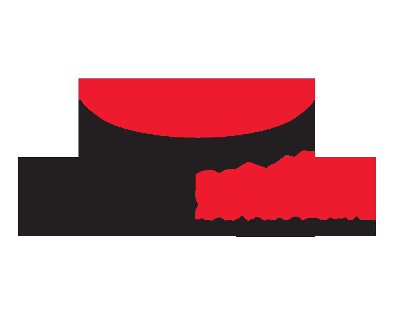 Vibration Solutions SpeedPlate EBA Pro System - For 4-Lug, 5-Lug, 6-Lug & 8-Lug wheels E400-360-50